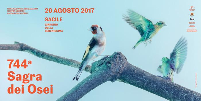 Sagra-dei-Osei-2017-Sacile