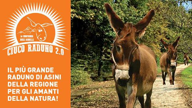 Ciuco-Raduno-parco-san-floriano